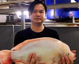 6920-科技养鱼人Ryan陈丰裕 FI (1)